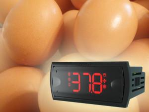 Controle de Temperatura para Chocadeiras