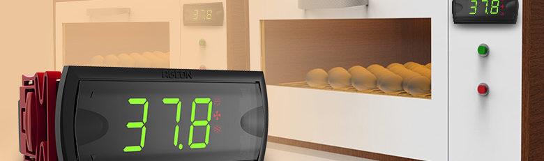 5 Dicas sobre Controle de Temperatura em Chocadeiras