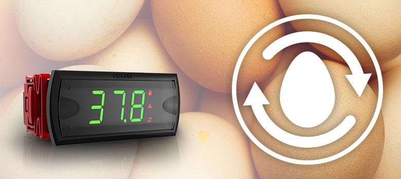 Termostato com Viragem dos Ovos para Chocadeiras