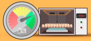 Como controlar a umidade em uma chocadeira de ovos?